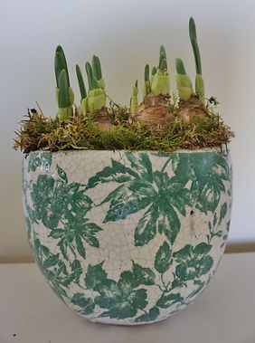Ceramic narcissi pot.jpg