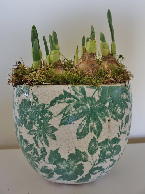Tall ceramic bulb planter.