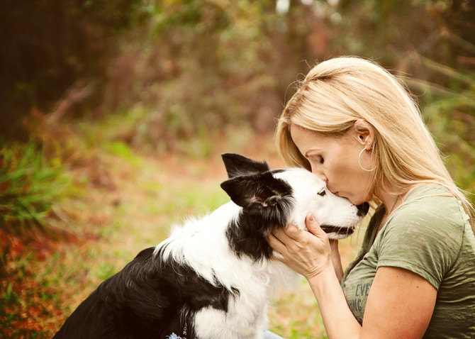 Treating PTSD With Natural Dog Training