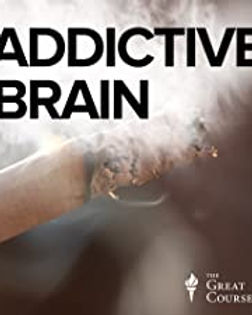 The Addictive Brain.jpg
