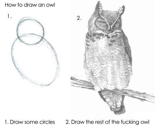 how to draw an owl meme illustration shapes