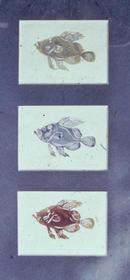 John Dories Linolium Cut Prints