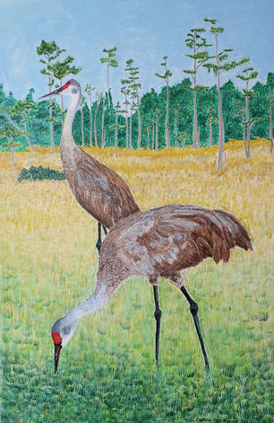 "2 Sandhill Cranes Acrylic 20"" x 40"""