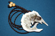 Elk Antler Burr Sailfish
