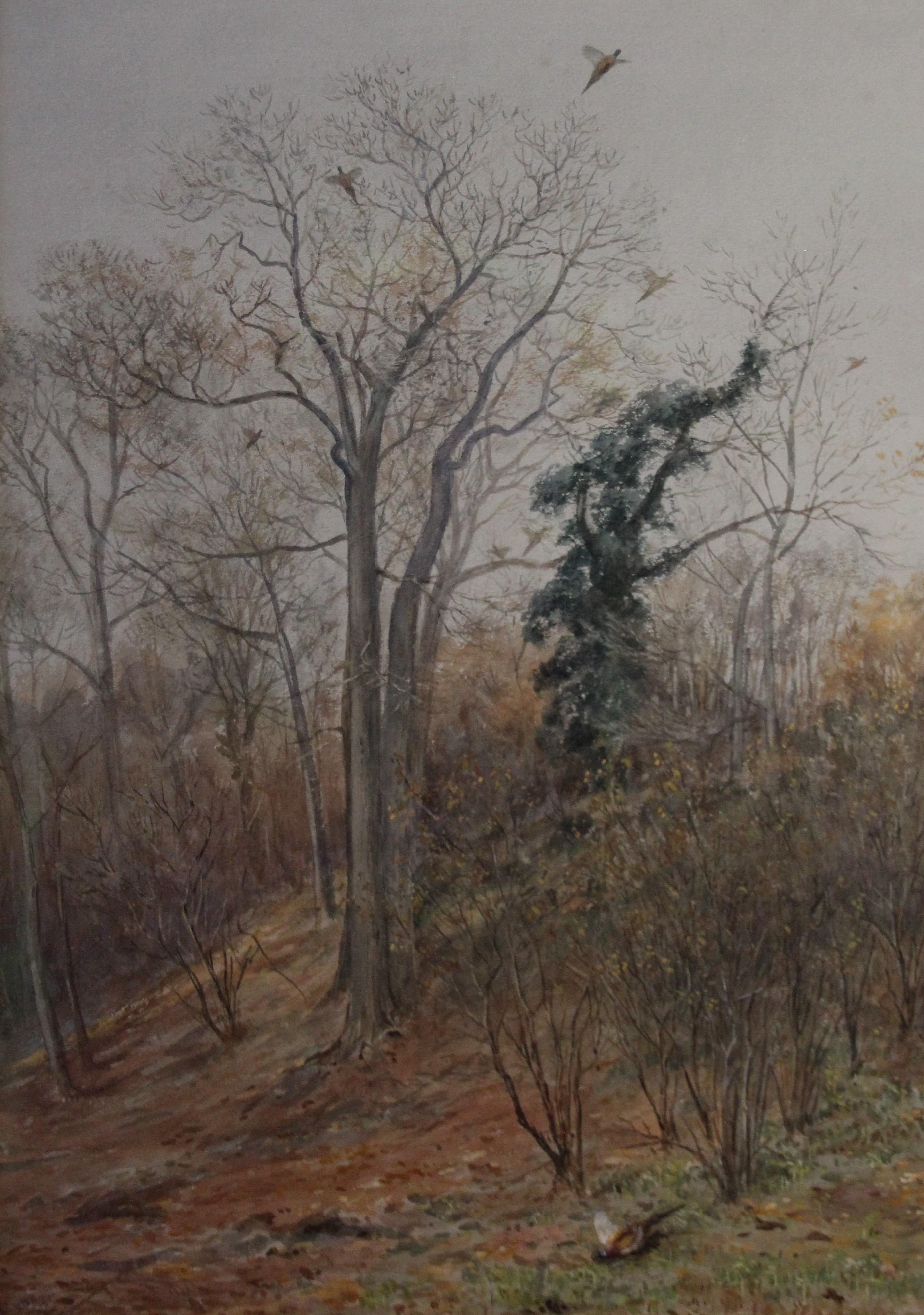 Vincent Balfour Browne