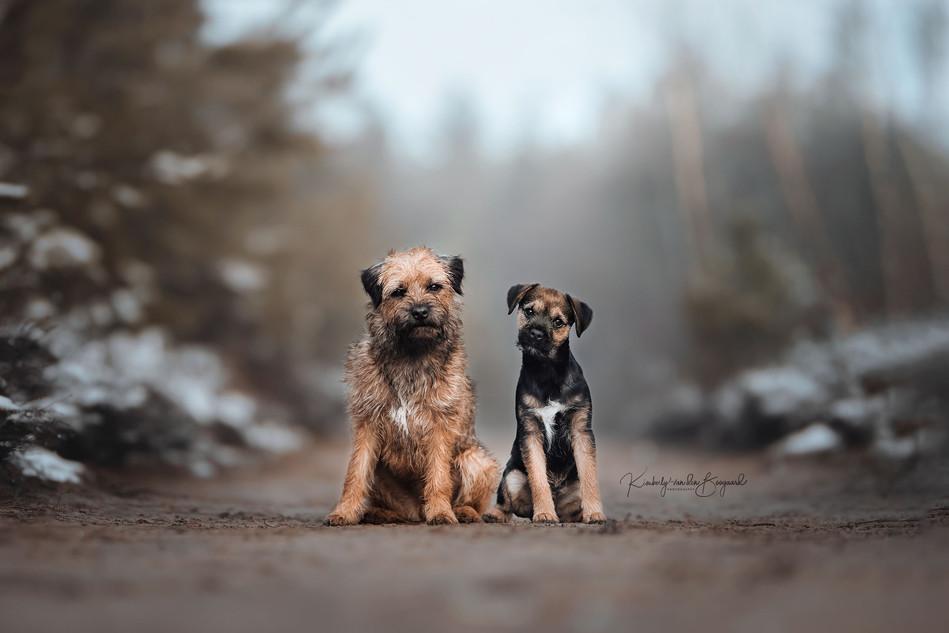 Donnie & Bailey