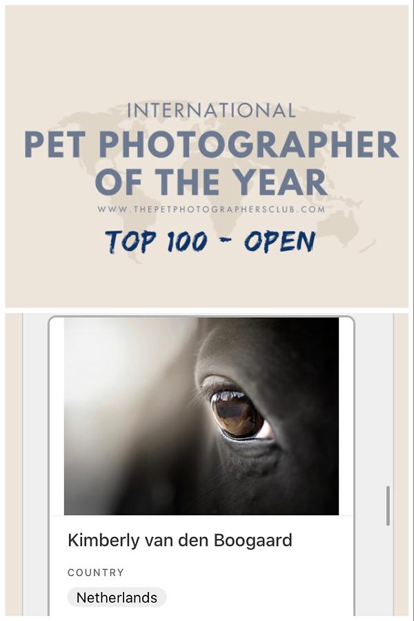 International Pet Photographer of the Year