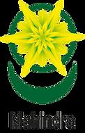 logo BroMahindraPNG.png