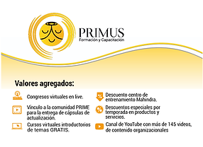 banner primus 4-09.png