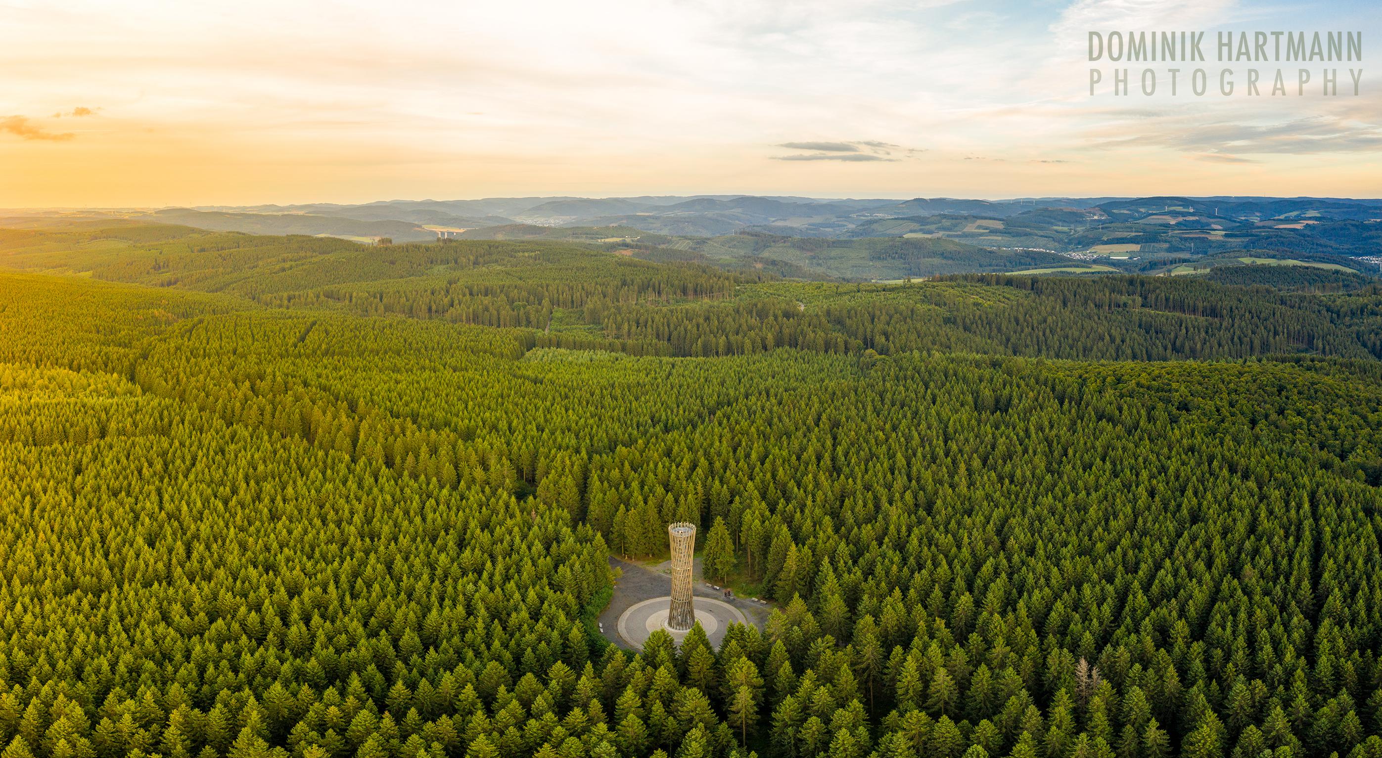 Dominik Hartmann Lörmecke Turm