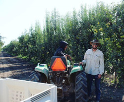 _Another day in the Pear biz! 🍐_ -Rich