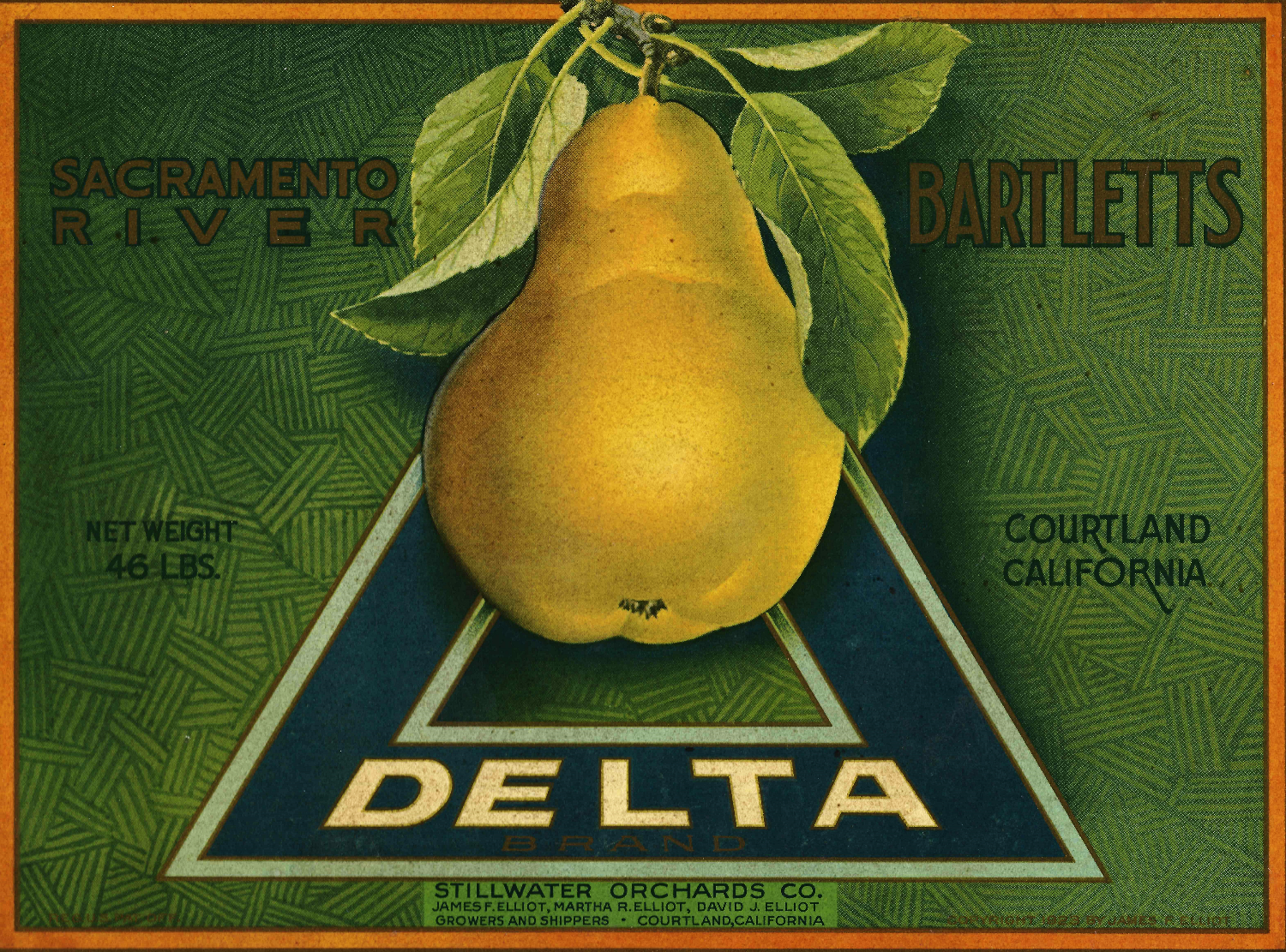 Delta Label_edited_edited