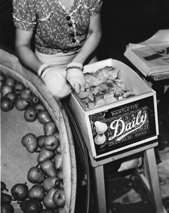 Packing 1940's