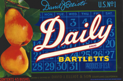 Daily Label