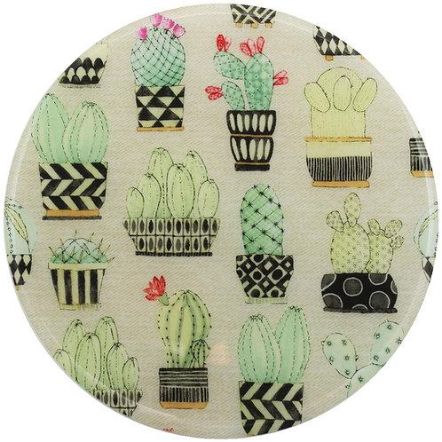 Cactus - 268