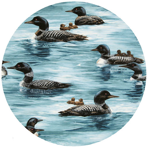 Loon Without Reeds*