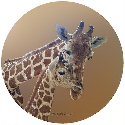 Giraffe - KMG1