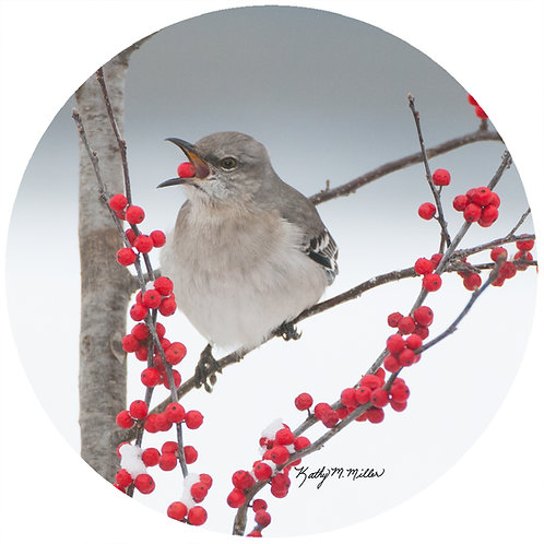 Mockingbird - KMM1