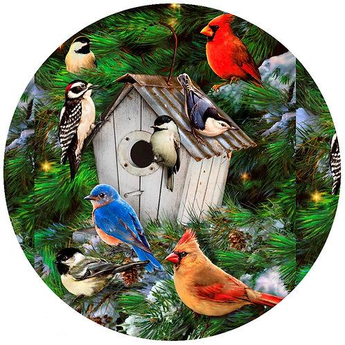 Bird House - 391