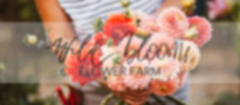 flower farm ripon, ripon, dahlia, flower stand, bouquet,