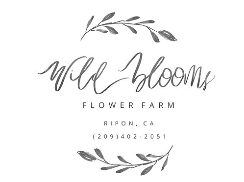 Wildblooms T-shirt- COMING SOON