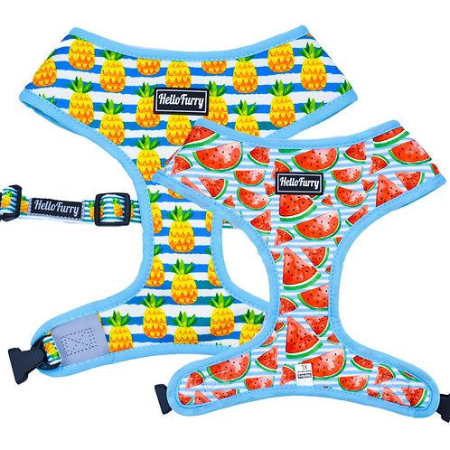 REVERSIBLE HARNESS – Pineapple / Watermelon Fruit