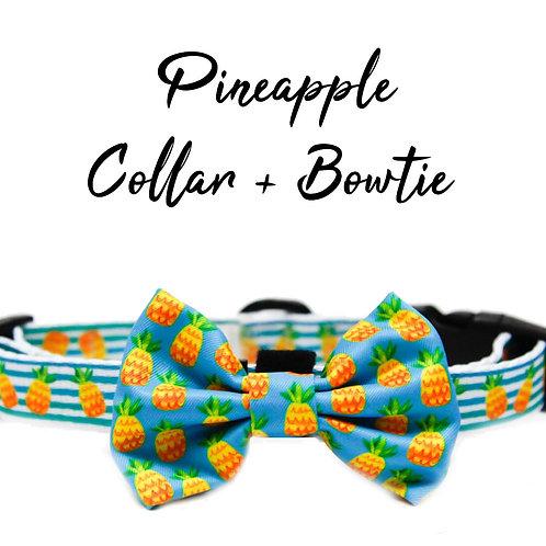 Collar + Bow – Pineapple Fruit