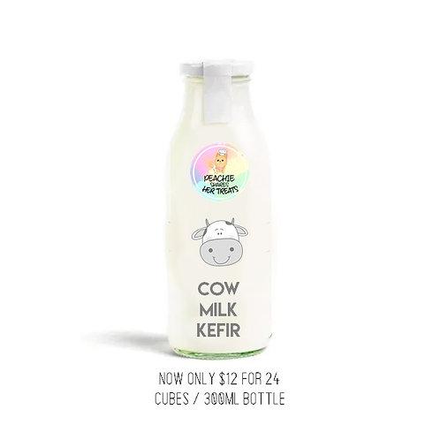 Cow Milk Kefir