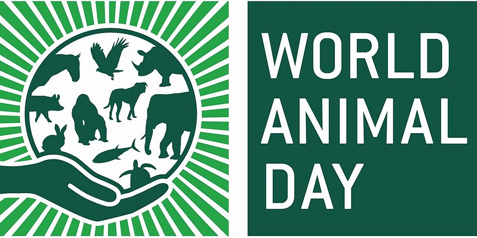 World Animal Day Carnival