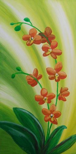 Orchidee im Licht