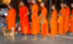 moines luang prabang 2.png