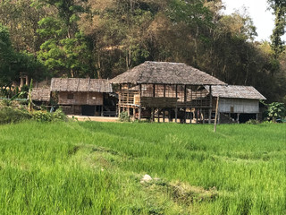 TONG LUANG - VILLAGE MULTI TRIBAL ET ECO AGRICULTURE...
