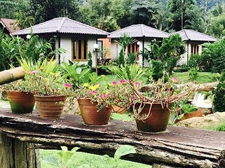 Organiser-voyage-Thailande-hotel-phu-ruea