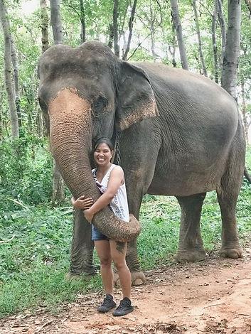 Guide francophone Thailande elephants.jpg