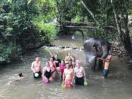 elephant riviere.jpg