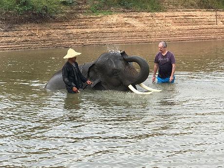 Voyage Thailande famille elephants.jpg
