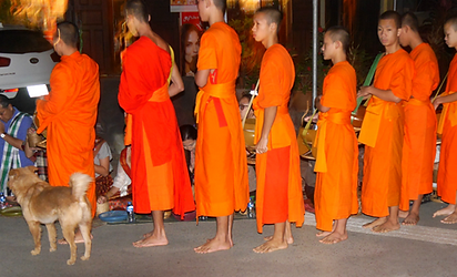 offrandes moines luang prabang - thailande vacance