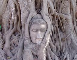 parc historique ayutthaya - organisateur voyage thailande