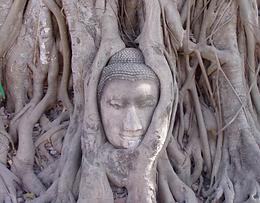ayutthaya 5.png