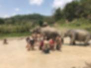bain de bous elephants - guide touristique thailande