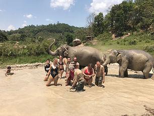 bain de bous elephants - thailande vacance