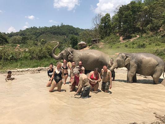 elephant sanctuary - organiser voyage thailande