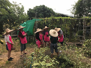 cours de cuisine chiang mai - siam-holidays.com