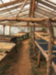 ferme organique thailande - guide touristique thailande