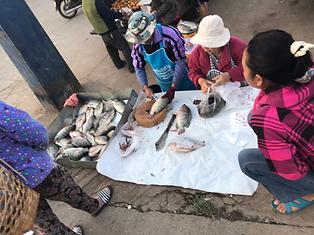 marché local mae salong - voyages thailande circuit