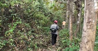 jungle luang prabang - organisateur voyage thailande
