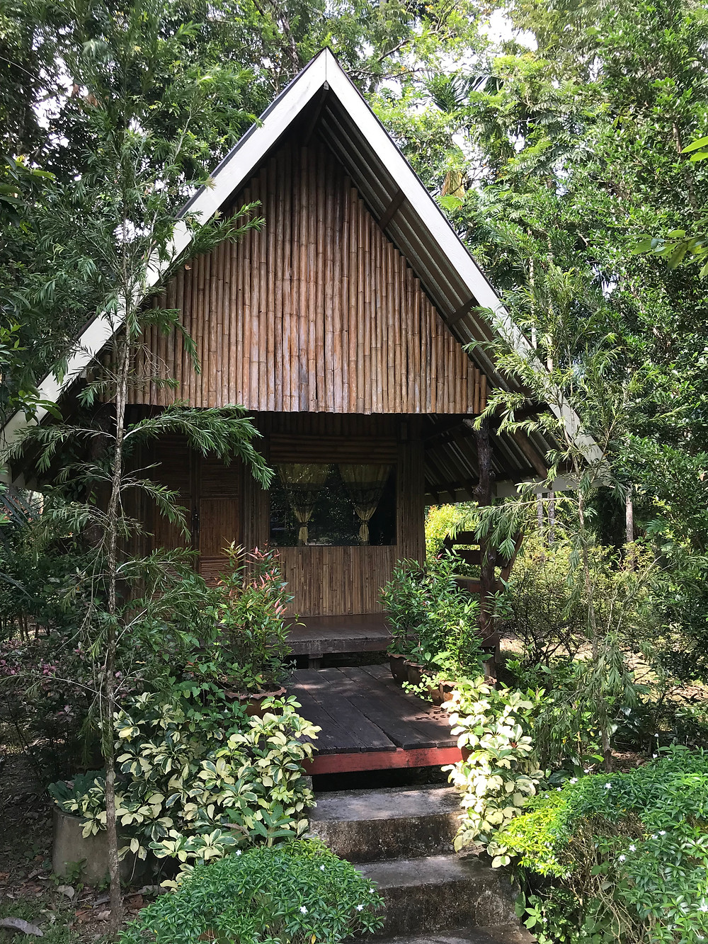 visite thailande-khao sok jungle resort