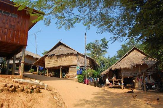 maison en bambous