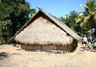 shompoo 5.PNG