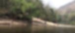 jungle raft 4.png